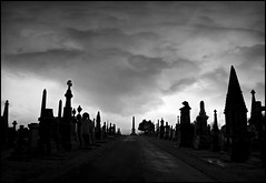Meanwhile, on location with Hammer Films... (Cul 9) Tags: cemetery graveyard headstones tombstones blackwhitephotos undercliffcemetery