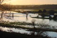 Nene Flooding at Denford (Pegpilot) Tags: november river flooding floods nene 2012 denford