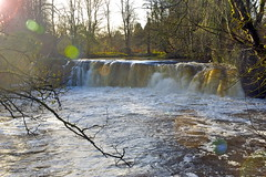 White Cart Water unfettered (rachel.roze) Tags: river waterfall glasgow cathcart whitecartwater linnpark november2012