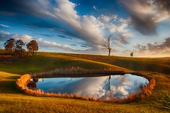 Gold Afternoon (paulhollins) Tags: newsouthwales aus woodville