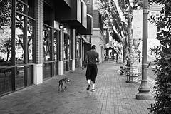 tempe 3744 (m.r. nelson) Tags: arizona urban bw usa southwest monochrome america blackwhite streetphotography az bn americana artphotography mrnelson thelittledoglaughed temep markinaz sonya77 nelsonaz