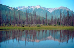 Vermilion Lake Reflections (AR_the old guy) Tags: blue trees sky canada mountains film 35mm reflections rockies pentax negative alberta scanned adjusted vermilionlake concordians espio145m
