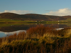 Kirbister Loch Orphir Orkney (stuartcroy) Tags: blue autumn sky lake colour reflection water beautiful weather orkney scenery day panasonic loch kirkwall dmcfz10 orphir kirbister photographyforrecreation flickrstruereflection1 rememberthatmomentlevel1 rememberthatmomentlevel2 vigilantphotographersunite vpu2 vpu3 pwpartlycloudy infinitexposure