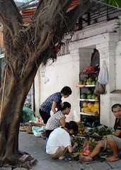 Fruit seller (Dollynpc) Tags: vietnam hanoi fruitseller fruitstall