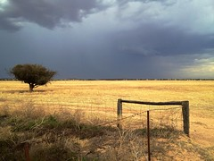 Storm over Parilla (Andy Burton Oz) Tags: cloud storm fence cereal harvest australia southaustralia stormcloud parilla 2012 cropping fenceline hff andyburton iphoneography nepondi southernmallee fencefriday happyfencefriday iphone4s flickrexport401 aperture343
