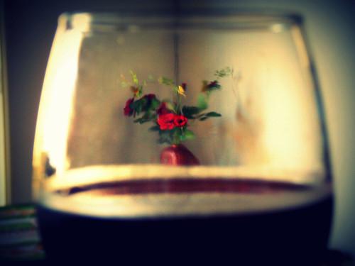 Wine and Roses (Fabianni L. Ribeiro) roses wine