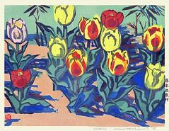 Tulip (Japanese Flower and Bird Art) Tags: flower tulip tulipa liliaceae okiie hashimoto modern sosaku woodblock print japan japanese art readercollection