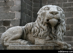 One of the decorative lions on Cathedral Square (Ubierno) Tags: españa spain europa europe castillaleón castilla meseta ávila abulense worldheritagesite patrimoniodelahumanidad catedral cathedral gothic gótico middleages edadmedia ubierno plateau