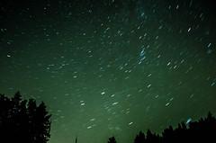 Test star trails (tanvirtas13) Tags: night dark stars sky trees startrails natural light ambientlight nikon d5100 1855 landscape