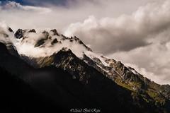 Naltar, Gilgit (Asad Ijaz Raja) Tags: naltar gilgit pakistan north northernareas snow green