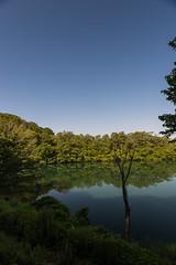 Jyuniko (hirorin2013) Tags:         aomori shirakamisanchi tsugaru    jp