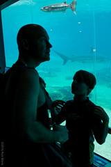 Seaworld 190916-7428 (~.Rick.~) Tags: angel brayden ethan goldcoast gordon michelle omniadoco queensland rickmonk seaworld family fun mainbeach australia au