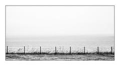 No horizon (Knipsbildchenknipser) Tags: northsea scotland sea horizon sw schwarzweiss monochrome bw blackandwhite blackwhite landscape landschaft seascape meer nordsee horizont
