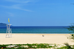 Paradise perfect (Roving I) Tags: beaches whitesand towers flags lifesaving sea bluesky nature greenery plants empty deserted leisure lifestyle travel tourism danang vietnam structures