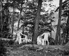 White plastic chair (Hasse Linden) Tags: film analog analogue expiredfilm colorfilmdevelopedasblackandwhite kodak portra portra400vc adox adonal rodinal plasticchair scanner epsonv750pro vuescan mediumformat mamiya rb67 6x7 120