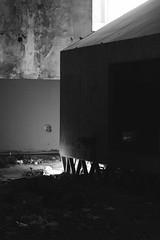 garbage through darkness (meriflush) Tags: matadero basura contraste
