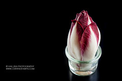 Radicchio II (vas_eka) Tags: bio burgundy chef cleaneating cooking culinary cuttingboard darkphoto delicious detox diet farmer farmersmarket fitfood fitness food foodstyling foodie foodphoto fresh gourmet hautecuisine healthy homemade ingredients isolated italiancuisine kitchen magenta meal menu motivation natural nutrition paleo purple radicchio rawvegan red restaurant rustic salad seasonal serviceware stilllife styling stylish superfood table tableset tasty traditional trendy vegan vegetables vegetarian wooden yummy