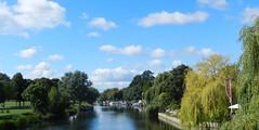 River Avon, Bidford on Avon, Warwickshire, Sep 2016 (allanmaciver) Tags: river avon bidford warwickshire trees line blue water calm bridge sky weather clouds allanmaciver