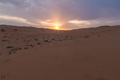 The Morning |  (Abdulrahman AlShetwi) Tags: morning wild cloud sun clouds sunrise sand cloudy dunes saudi arabia                                      alshetwi