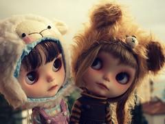Trufa y Sia