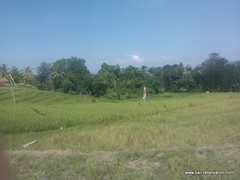 land for sale near seseh beach bali indonesia (franky_ok2) Tags: bali beach indonesia near free agency land hold reservation kuta seseh