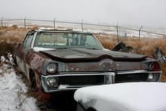 1967 Pontiac Parisienne (dave_7) Tags: classic car rust rusty canadian 1967 pontiac parisienne