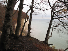 sassnitz (top drawer) Tags: baltic cliffs rugen