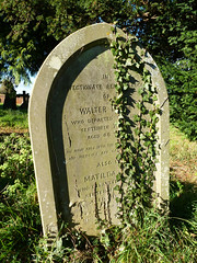 Beyond the grave (Messent) Tags: pictures cemetery grave memorial poetry headstone ivy engraving churchyard gravestones childrey poetryandpicturesinternational poetryforall