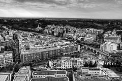 vistas de Roma (Santi BF) Tags: bw roma blancoynegro monocromo italia vistas blancinegre