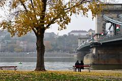 Budapest / Turul (SCL/BUD) Tags: zeiss nikon europa europe hungary budapest streetphotography easterneurope magyarorszag hungra distagon carlzeiss europadeleste documentaryphotography carlzeisslenses fotografadocumental zf2 d7000 fotografacallejera nikond7000 zeissdistagont35mmf2zf2