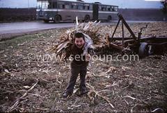 AL KK P0002350 (setboun photos) Tags: europe communism historical albania socialism southerneurope albanie kukes europedusud politicalandsocialissue balkaniccountry lalbaniealabridutemps