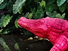 Roma -  Gnam! Lacrime di coccodrillo - Crocodile tears (byus71) Tags: rome roma crocodile coccodrillo biopark bioparco crackingartgroup nucara