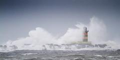 IJmuiden storm 25 november 2012 (PeterWdeK) Tags: sea lighthouse storm holland waves nederland noordzee zee ijmuiden golven golfbreker