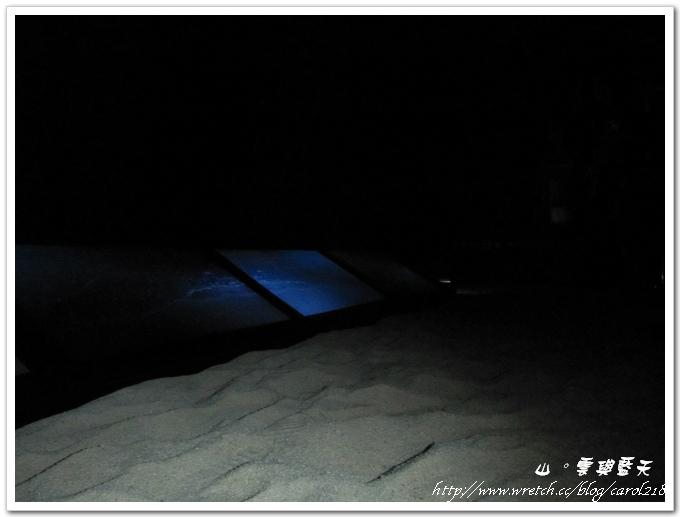 沙灘海浪4