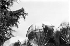 baloons (antndrnv) Tags: venice white black biennale antn drnv
