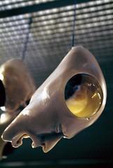 Secadero de Pensamientos (lidorico) Tags: sculpture art artist rico escultura lido