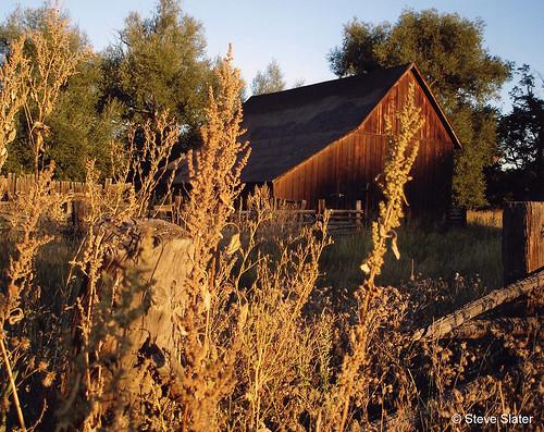 Photo - Dorn Barn at Sunrise