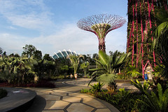 The End of the Day (Jocey K) Tags: trees sky people sculpture holiday building art architecture clouds palms singapore patterns designs archtitecture marinabay supertreegrove marinabaygardens