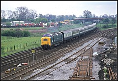 55020 Newark 7May77 (david.hayes77) Tags: nimbus newark napier northgate deltic ecml class55 55020