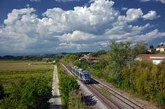 R 11770 @ Castelfiorentino (Wesley van Drongelen) Tags: fs ffss ferrovie dello stato trenitalia r regionale minuetto aln 501 502 jazz castelfiorentino firenze florence siena train trein zug treno