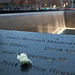 World Trade Center - Rose placed in the inscribed names