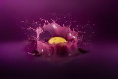 monochrome purple.. (Antonio Iacobelli (Jacobson-2012)) Tags: nikon d5 nikkor 60mm sb910 cactus rf60 360 ttl quadralite interni acrilico color bari sfondo trigger navigator x acrylic lemon yellow limone purple viola