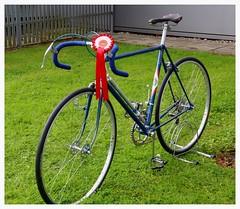 The Winner. (Paris-Roubaix) Tags: georgetown cup team time trial glasgow couriers inchinnan flying scot display box lining bob jackson