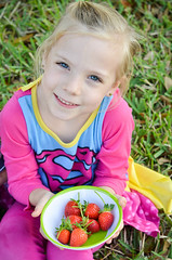The Girl I grew holding the berries I grew (zacklayman) Tags: grass natural cute kid sweet nose pose girl child love poise princess hair 50mm smile face berries blond super teeth light blue lashes beautiful strawberry innocent eyes strawberries supergirl pretty peace daddys play lips