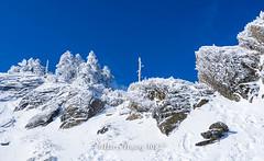 Harry_30827,,,,,,,,,,,,,,,,,,,,,,,Hehuan Mountain,Taroko National Park,Snow,Winter (HarryTaiwan) Tags:                       hehuanmountain tarokonationalpark snow winter mountain     harryhuang   taiwan nikon d800 hgf78354ms35hinetnet adobergb