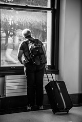 A whole new world... (christinemcroberts) Tags: reflection window luggage traveller travel commuter commute city ontario toronto unionstation station union nikonsd750 nikkor nikon white black blackandwhite photography streetphotography street