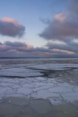 345/366 (DavidAndersson (away)) Tags: winter snow cold ice landscape early sweden vnersborg 366 day345 tamron18200f3563 skrckleparken 2012yip 3662012