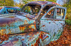 The end of the road (view[ ¤ ]finder) Tags: 1948chevroletstylemaster sedan lautograveyard junkyard autowrecker abandoned clunker rusted rusty derelict decay decayed autosalvage hdr photomatix nikkor1024mm afsdxnikkor1024mmf3545ged nikond7000 visionqualitygroup hdraward nikon manfrotto nikkor