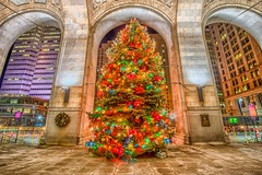 The Christmas tree outside of the county building in downtown Pittsburgh HDR (Dave DiCello) Tags: beautiful skyline photoshop nikon pittsburgh tripod usxtower christmastree mtwashington northshore northside bluehour nikkor hdr highdynamicrange pncpark thepoint pittsburghpirates cs4 ftpittbridge steelcity photomatix beautifulcities yinzer cityofbridges tonemapped theburgh clementebridge smithfieldstbridge pittsburgher colorefex cs5 ussteelbuilding beautifulskyline d700 thecityofbridges pittsburghphotography davedicello pittsburghcityofbridges steelscapes beautifulcitiesatnight hdrexposed picturesofpittsburgh cityofbridgesphotography