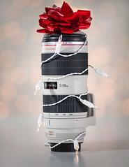 New Baby (JeezyDeezy) Tags: holiday canon is bokeh ii usm 2012 70200mm week51 newlens f28l weekofdecember16 christmas2012 xmas2012 week51theme 522012 52weeksthe2012edition